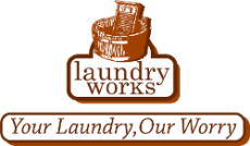 Fleet Management and Vehicle Tracking System Client LaundryWorkz